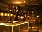 Музей Мумификации (Mummification Museum)